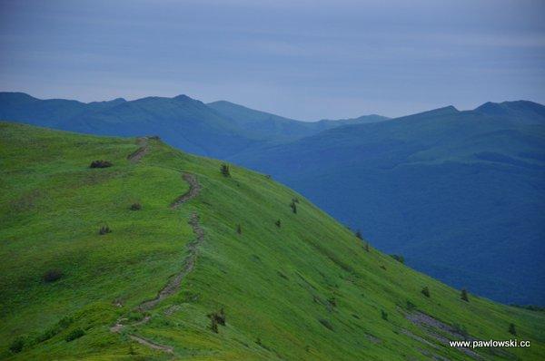 Główny Szlak Beskidzki; Połonina Wetlińska - Wołosate 10