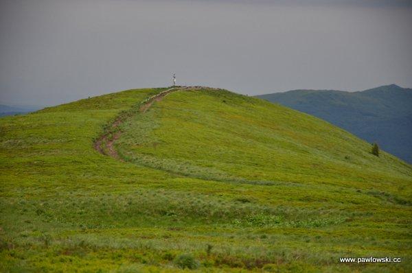 Główny Szlak Beskidzki; Połonina Wetlińska - Wołosate 16