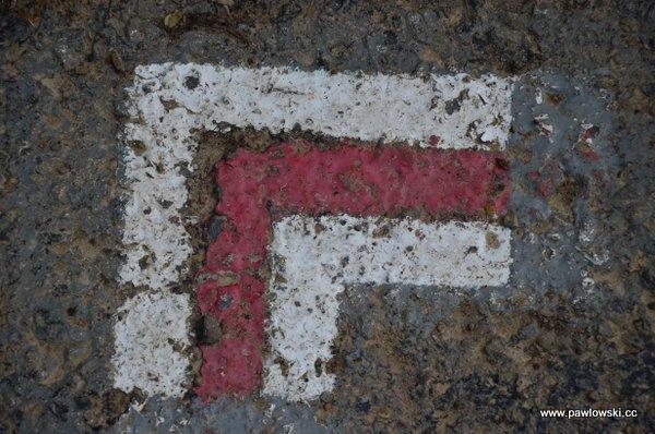 Główny Szlak Beskidzki; Połonina Wetlińska - Wołosate 27