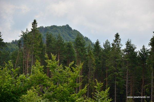 Korona Gór Polski; Pieniny - Wysoka 1050 m. n.p.m. 12