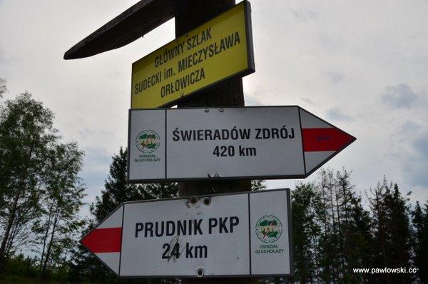 Główny Szlak Sudecki; Piotrowice Nyskie - Schronisko PTTK PodBiskupią Kopą 29