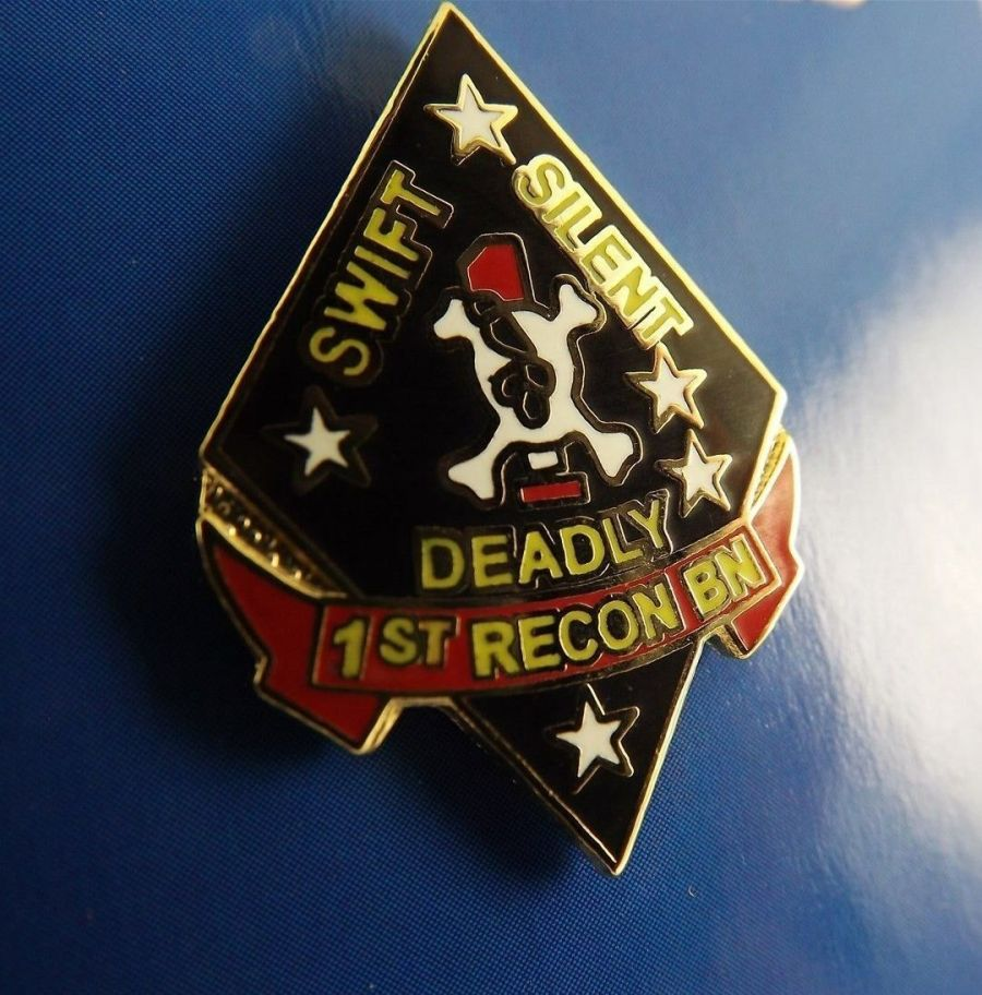 "BRAND NEW Lapel Pin USMC 001ST Recon Battalion Swift Silent Deadly Skull 1"" 1"
