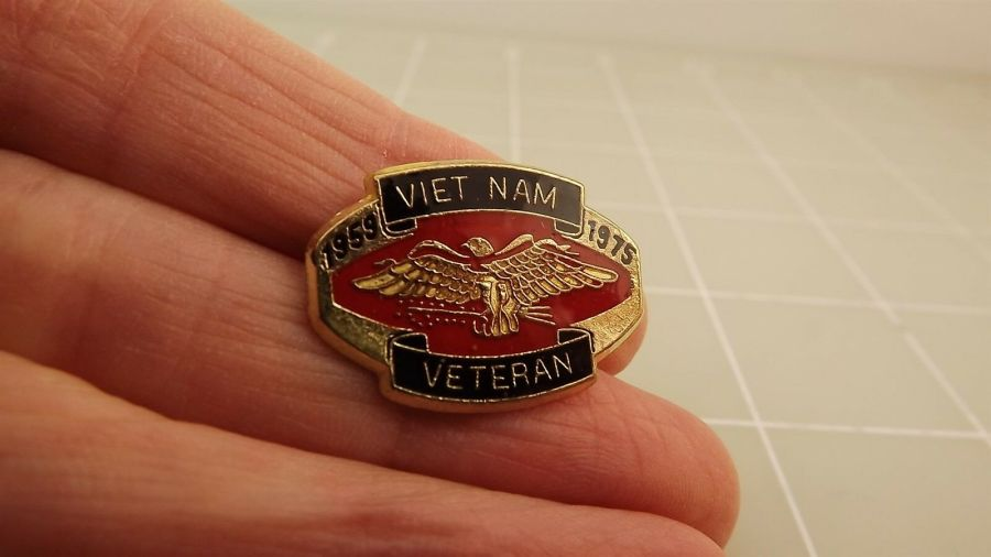 Collectible US Military VIETNAM VETERAN Eagle Enamel Lapel Pin 2