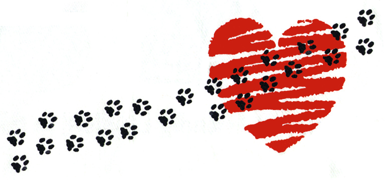 Image result for paws