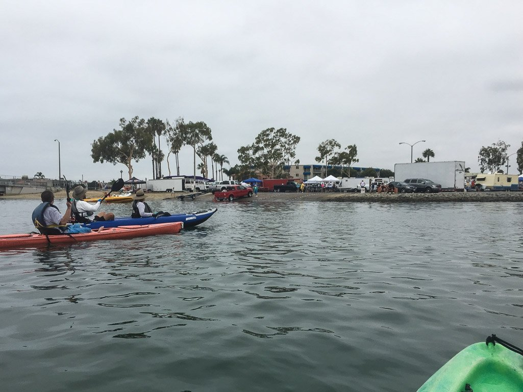 kayaking with dog to see moon jellies in long beach