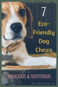 A dog and a bully stick with text overlay: 7 Eco-Friendly Dog Chews (Delicious & Nutritious)