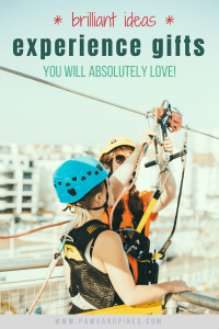 """A person zip-lining with a text overlay 'Brilliant Ideas: Experience Gifts You'll Absolutely Love"""""""