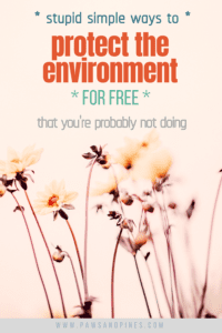 A bunch of flowers with text overlay: stupid simple ways to protect the environment FOR FREE that you're probably not doing
