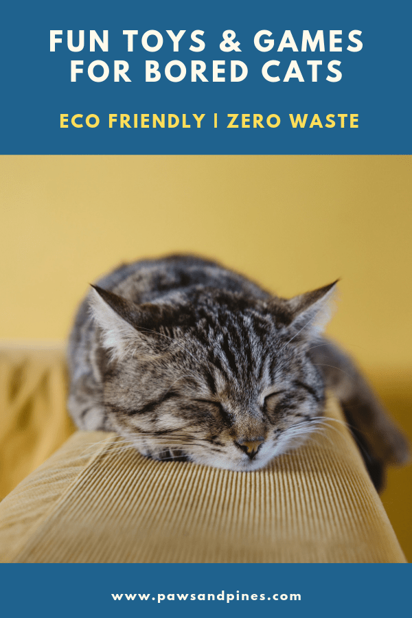 bored cat sleeping with text overlay: 'fun toys and games for bored cats | eco-friendly & zero waste'