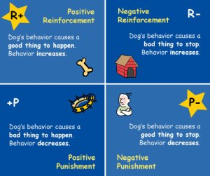 quadrants of operant conditioning