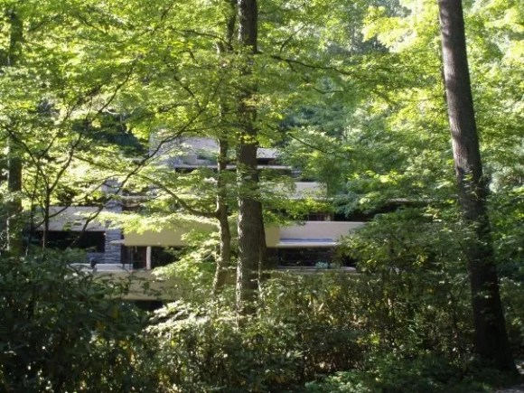 Fallingwater hidden within the trees