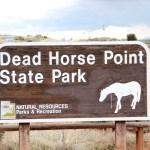 Dog Friendly Dead Horse Point State Park Utah