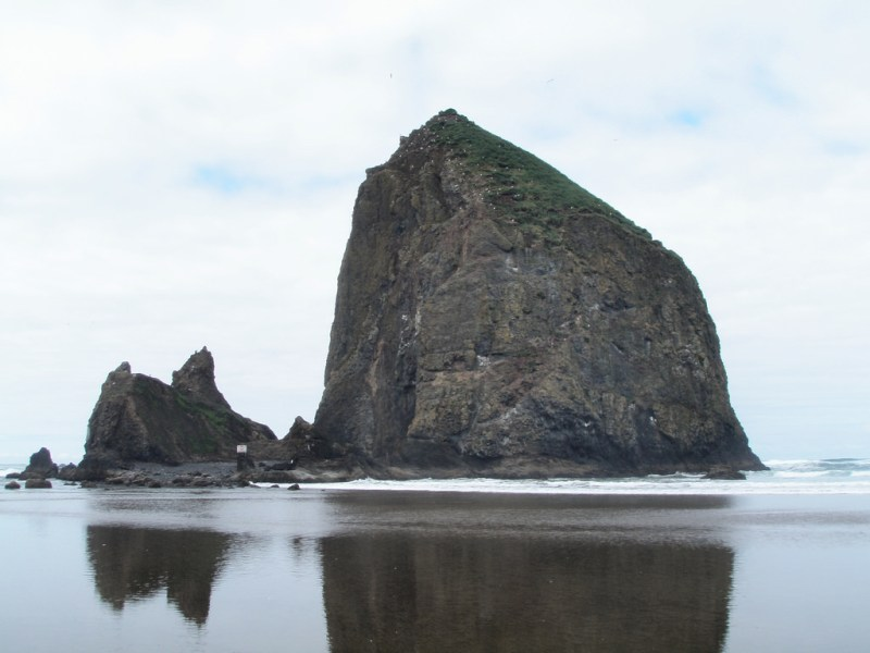 Haystack Rock with Dogs