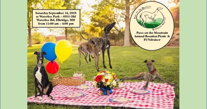 30th Anniversary Picnic
