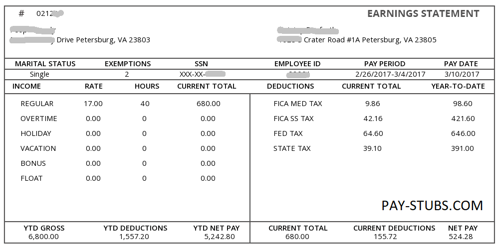 Sample Pay Stub Pay Stub Templates Pay Stub Sample