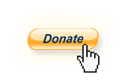 Image result for donation button