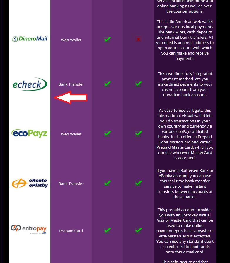 Echeck Software