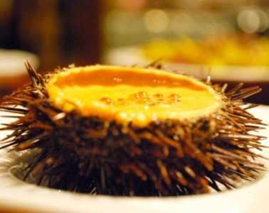 pintxos-a-san-sebastian-donosti-ration-tapas-dessert