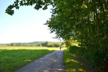 le-chemin-de-halage-au-pays-basque