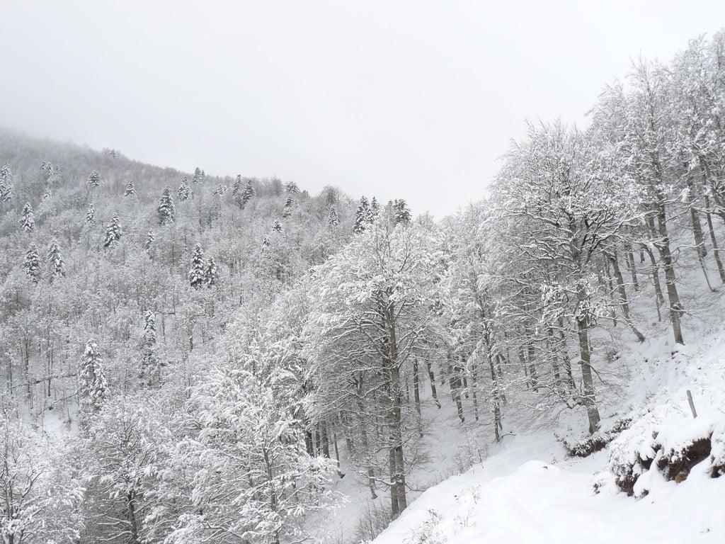 Iraty sous la neige
