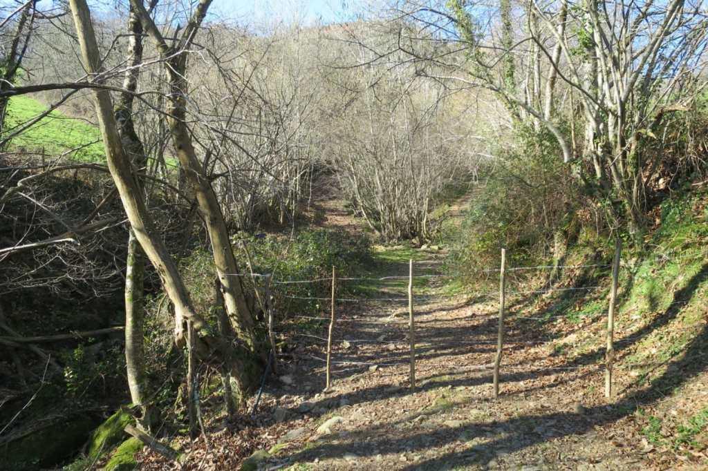 haltzamendi-montagne-paysbasque-barriere