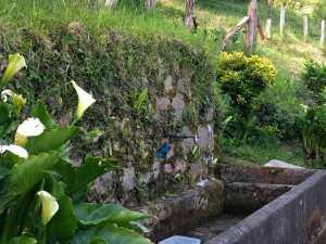 san-sebastian-a-orio-camino-de-santiago-pays-basque-espagne-randonnee-fontaine