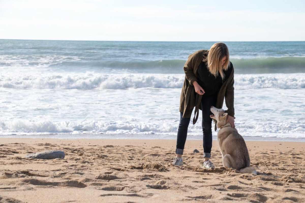 se-balader-avec-son-chien-au-pays-basque
