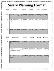 Salary Planning Format