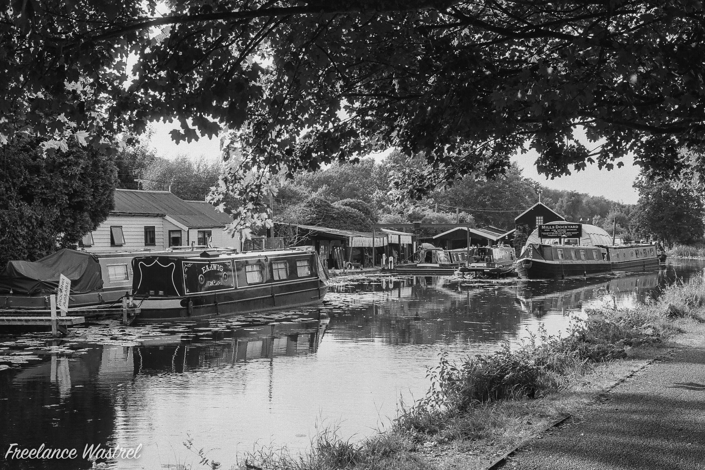 Erewash Canal, July 2018