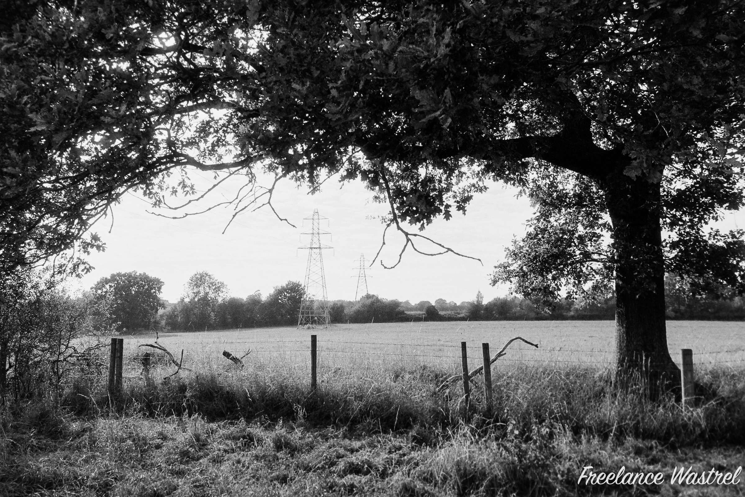 Pylons at Stoneyford