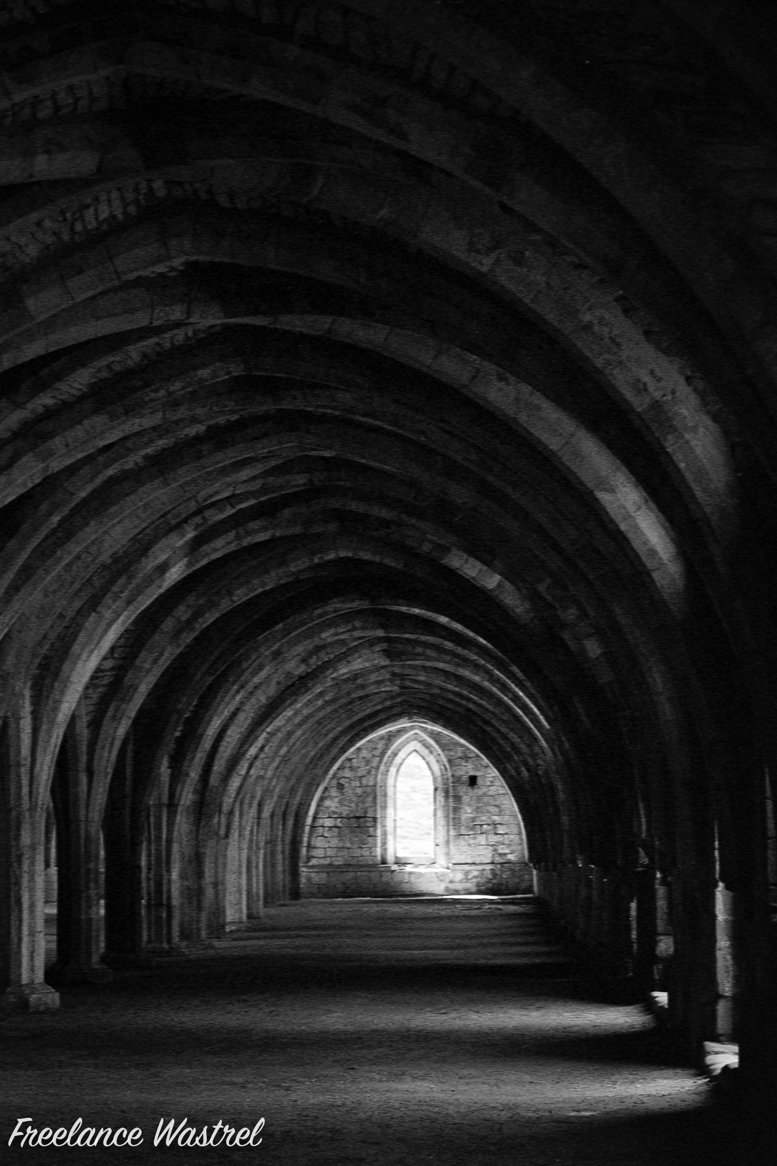 Illumination, The Cellarium, Fountains Abbey