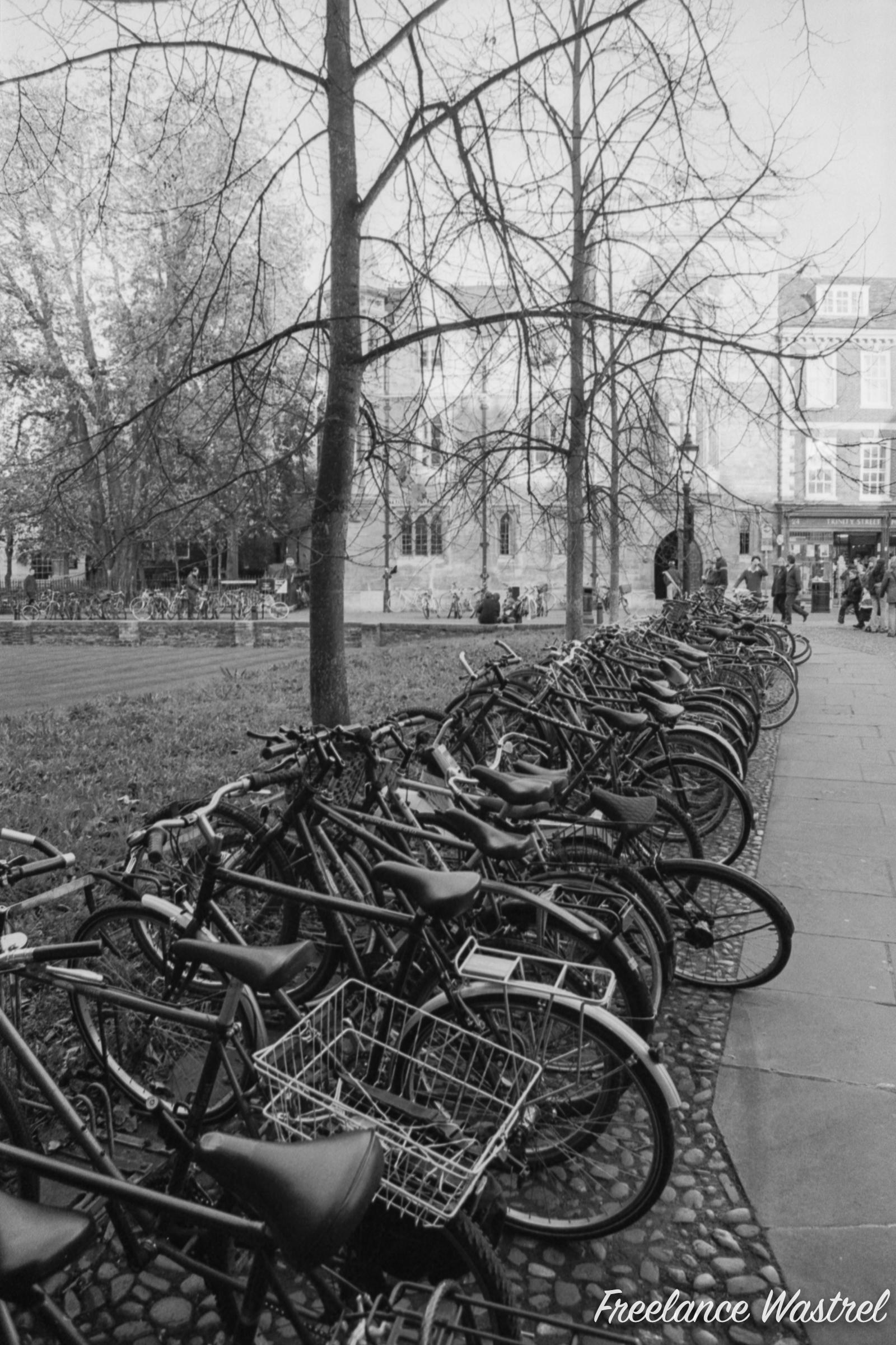 Bicycles, Trinity Street, Cambridge