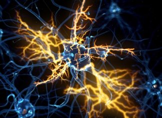 Promising ALS therapy impresses in clinical trials