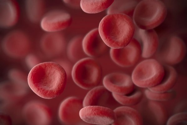 Breakthrough status for Roche's haemophilia A treatment