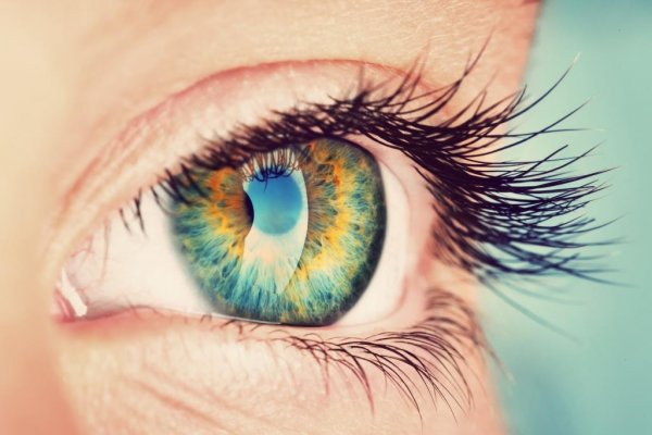 Wave Life Sciences developing therapeutics for rare genetic eye diseases