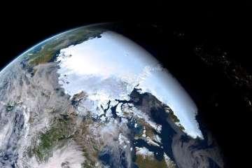 Entwurf für eine Allgemeine Erklärung der Rechte der Mutter Erde