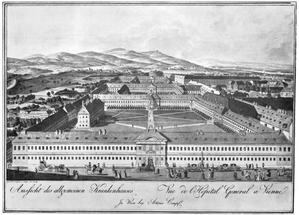 The Vienna General Hospital