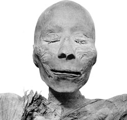 mummy head of Thutmosis I