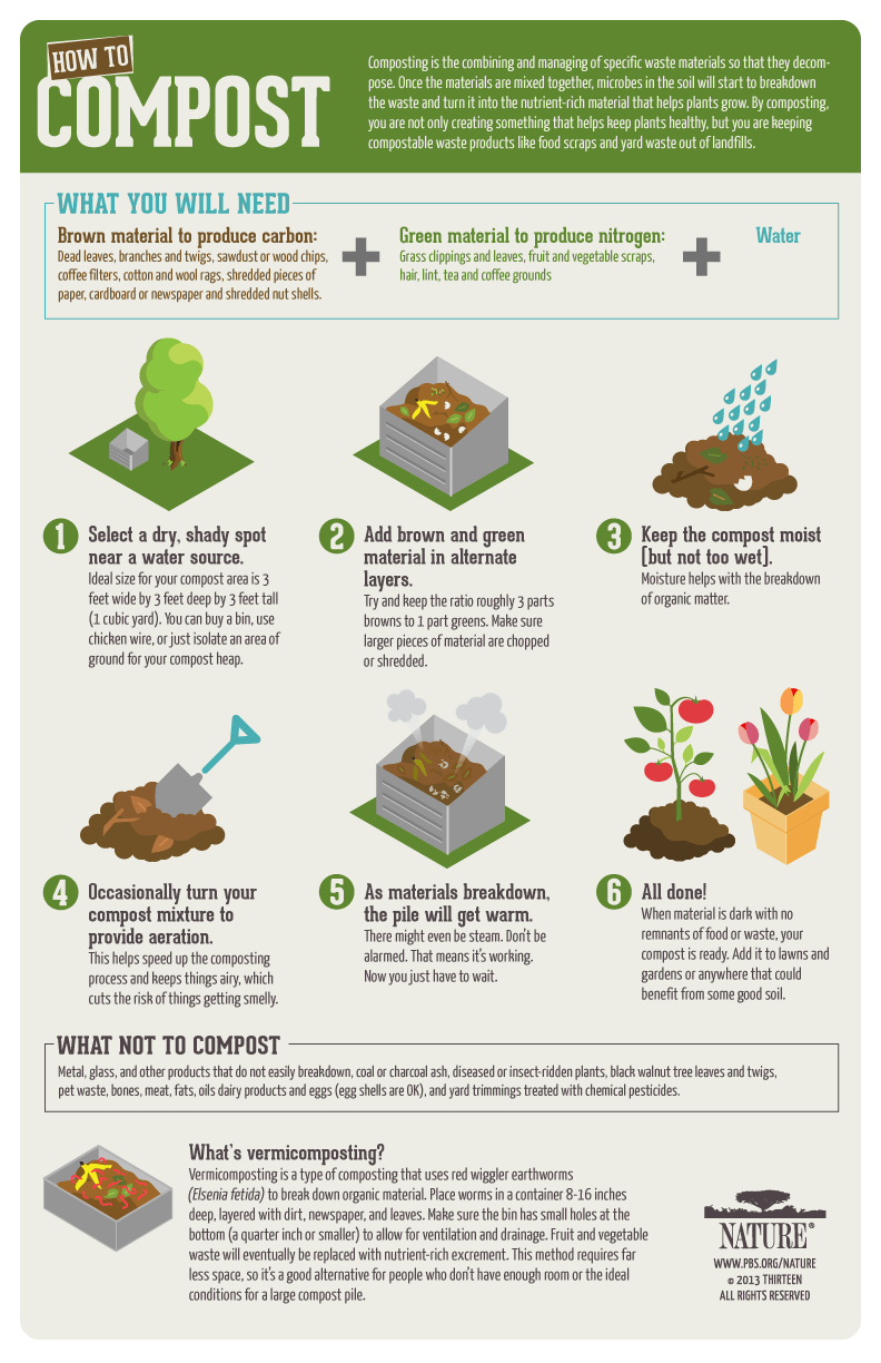 composting a new pile of info