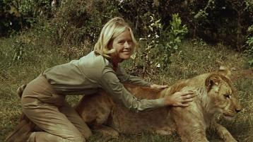 Image result for born free 1966 movie