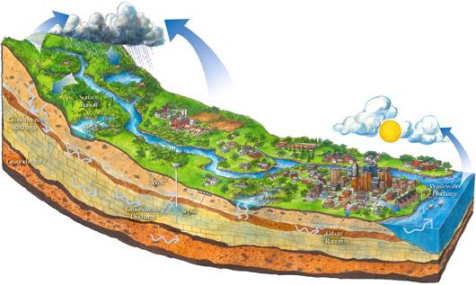 What is a watershed? | Minnesota Pollution Control Agency