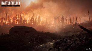 Battlefield 1 verdun heights