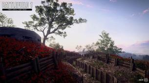 Battlefield 1 rupture
