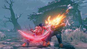 Street Fighter V Arcade Edition Kage Screen 9