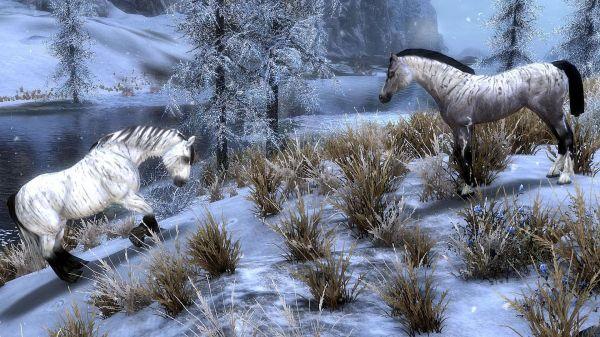 realistic horse mod skyrim se # 18
