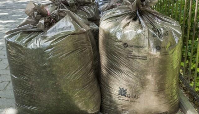 Ludzki kompost. Ostateczne odrzucenie duszy [WSTRZĄSAJĄCY POMYSŁ LEWICY]