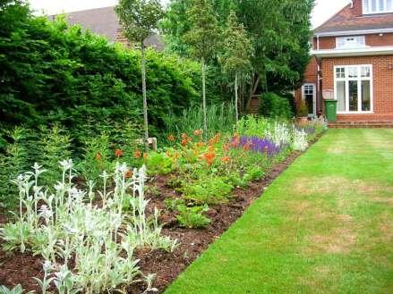 Summer planting in Oxshott