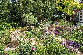 Roses and Perennials in Ashtead Garden