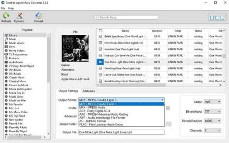 TuneFab output format
