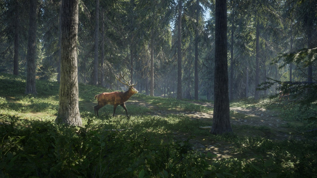 theHunter Call of the Wild Análisis (1)